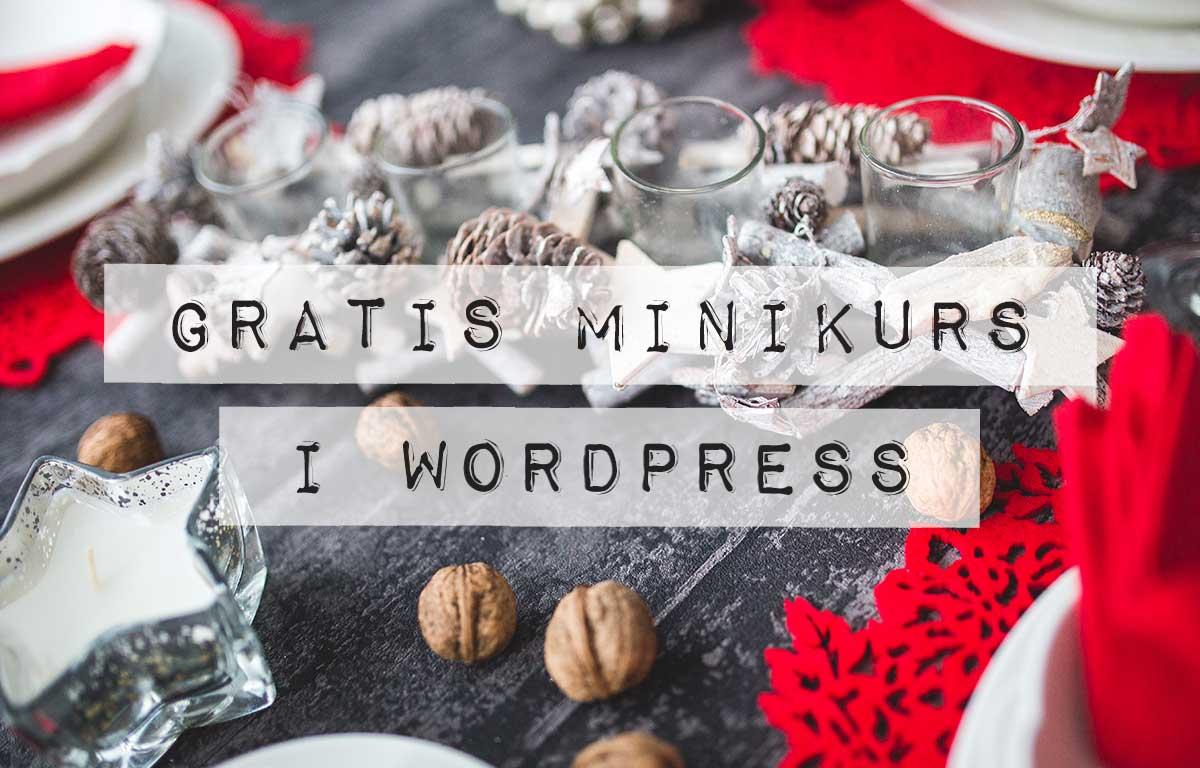 Min-Gratis-Minikurs-i-WordPress